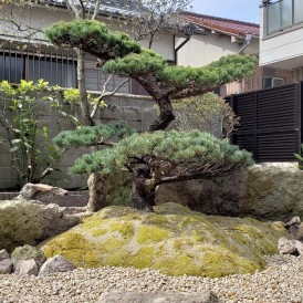 姫路市和庭リフォーム工事|松竹梅の和モダンの庭にガーデンリフォーム工事