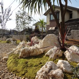 自然樹形の雑木の里山風のお庭加古川市