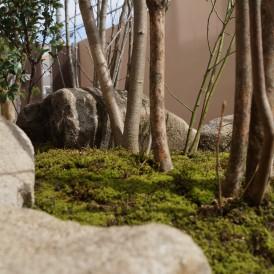 雑木を使ったこだわり和の趣のある自然な坪庭 姫路市M様邸