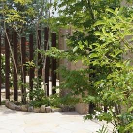 ナチュラルモダンな外構にヤマボウシなどの雑木の植栽工事 姫路市T様邸