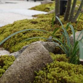 六方石でセンス良い自然な感じの良いお庭 神崎郡市川町K様邸