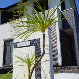 ドラセナと芝生のグリーンが綺麗なリゾート風のお庭 たつの市U様邸