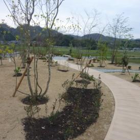 カラーコンクリート幅の広いアプローチがある雑木の庭 佐用町H様