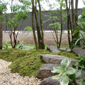 おしゃれな雑木のある坪庭 姫路市M様邸